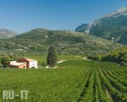 Винодельческое хозяйство в городе Пополи (Popoli)